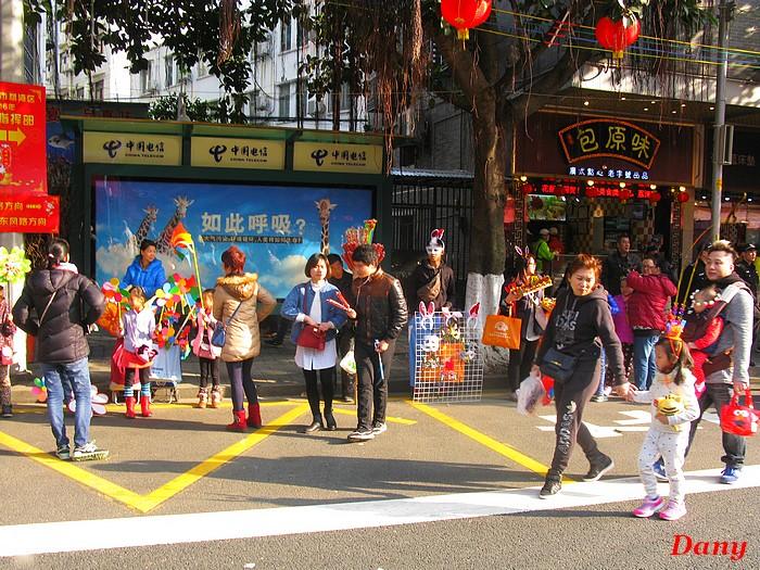 Chine 2015-2em marché aux fleurs-1