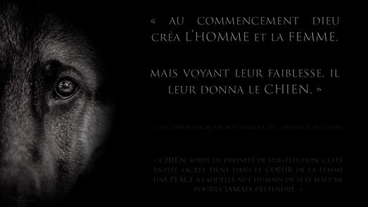 Stark - Citations
