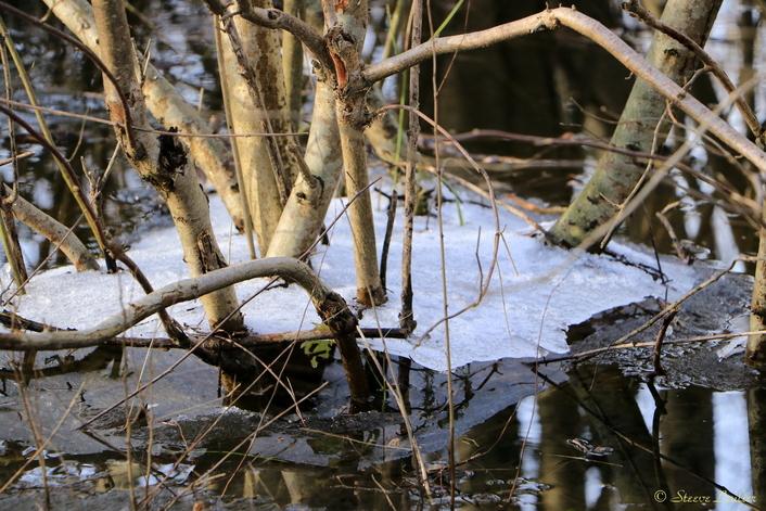 Reflets d'hiver, Hermé