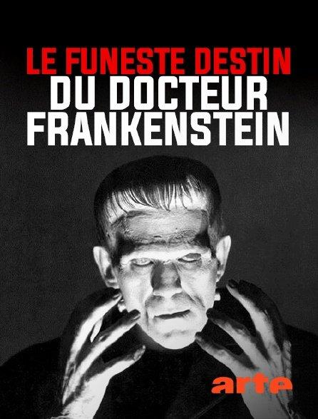 Le Funeste Destin du Docteur Frankenstein