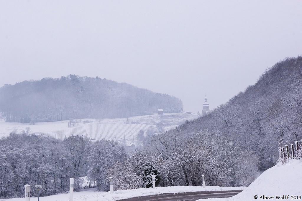 Neige sur la vigne - 2