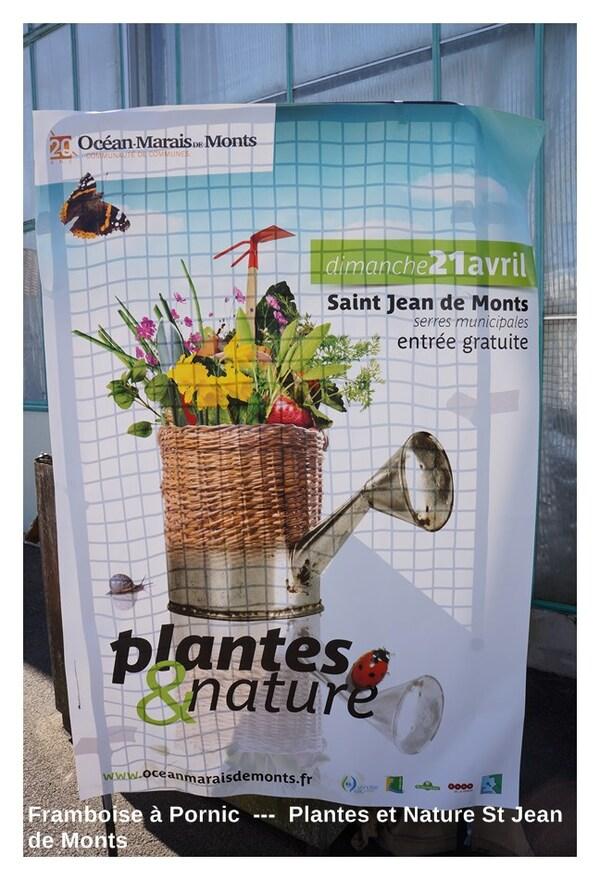 Plantes et Nature St Jean de Monts