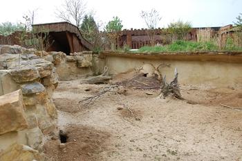 Zoo Osnabruck d50 2012 011