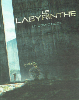 Le labyrinthe ~ comic book (roman graphique)