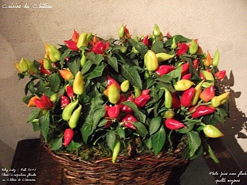 2011 aout chenonceau art floral 019