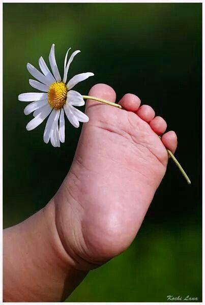 Picked Just For You. Ma  petite Marguerite d'Amour avec toi c'est le pieds jours après jours..