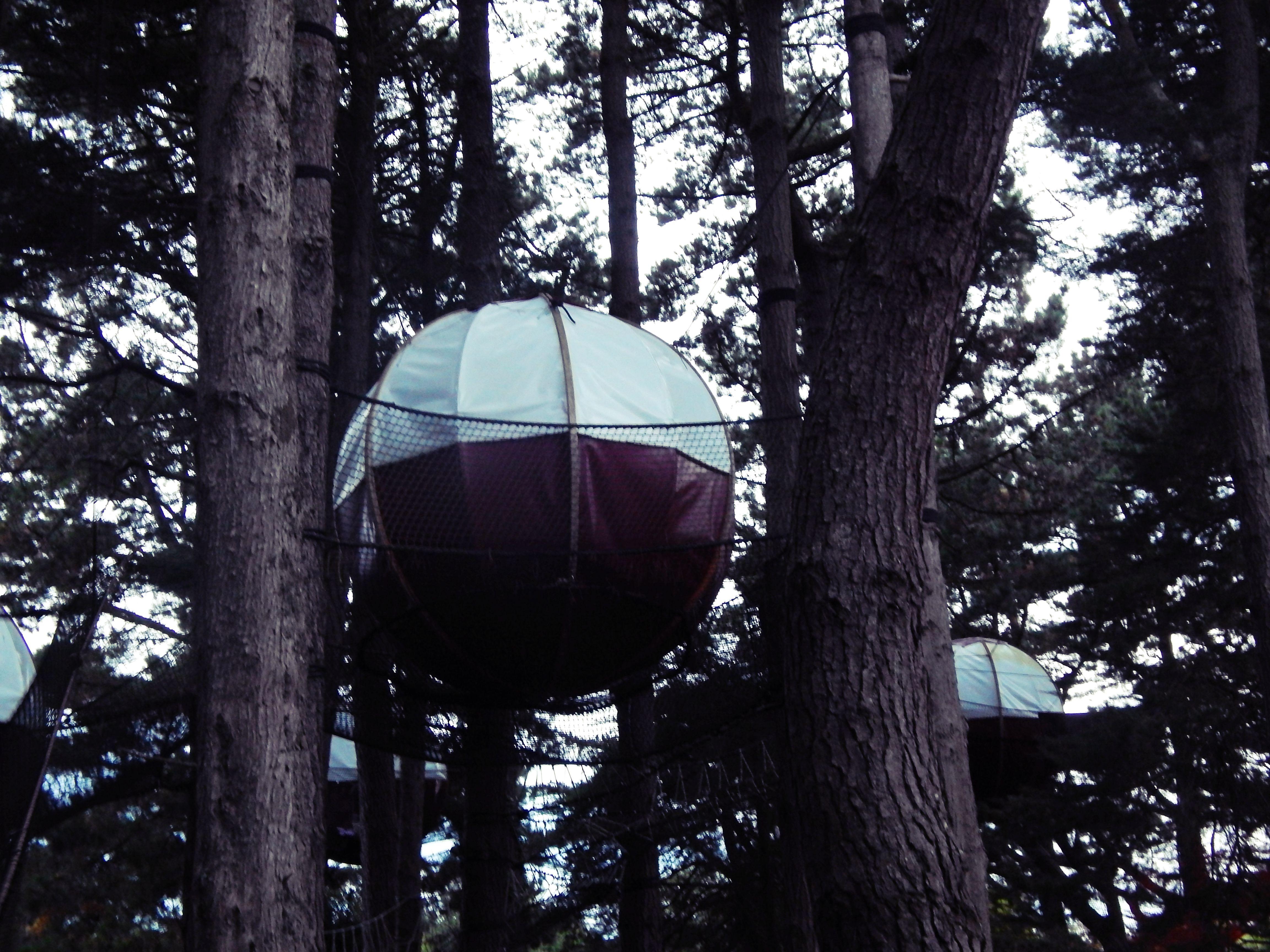 Une nuit dans une nid'île perché dans les arbres