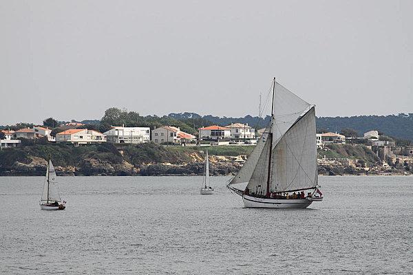 Voiles d'Estuaire Royan mai 2010(5)