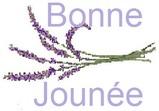 Lavandes de Provence ! cartonnettes