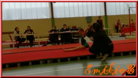 La gymnastique artistique