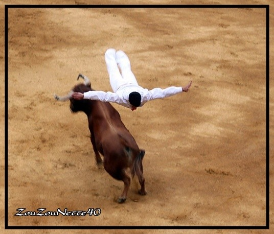ART-ET-COURAGE-saut--N--8--.jpg