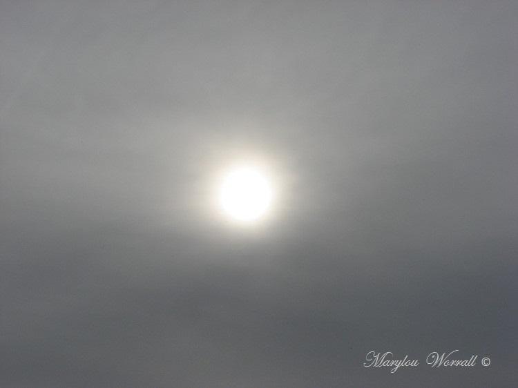 Ciel d'Alsace 290