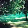 jardinPlantes1.jpg