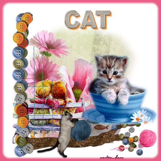 cadeau : un nouveau cluster les chats