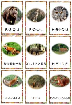 Vocabulaire - les animaux de la forêt