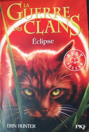 Chronique du roman {La guerre des clans - Cycle 3 - livre 4}