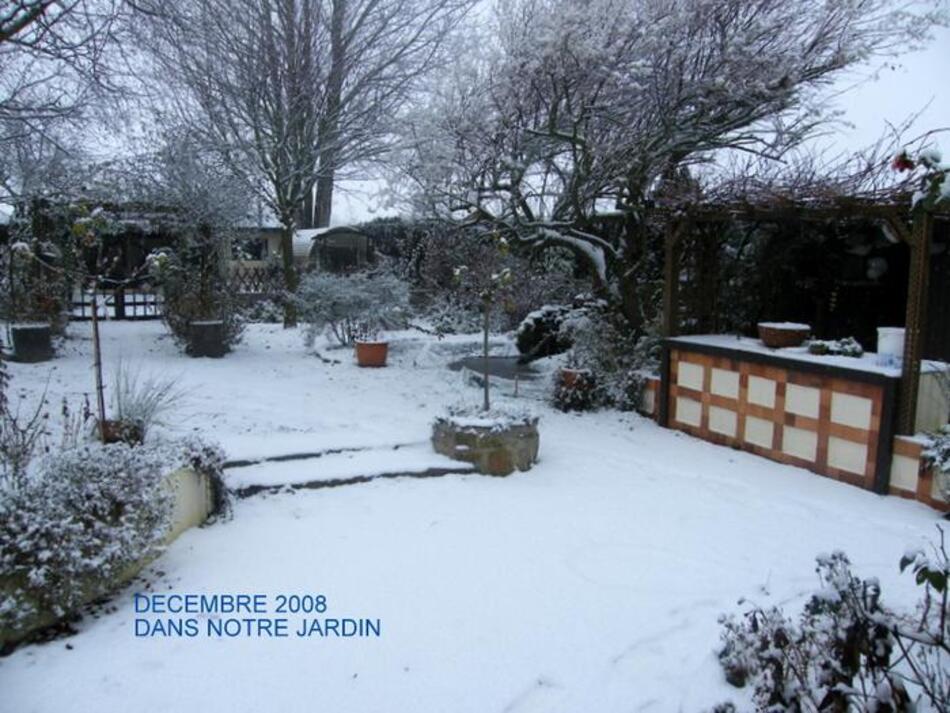 Décembre dans nos Jardins