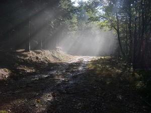 chemin-de-Stevenson--octobre-2007-056.jpg