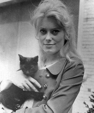 Brigitte et autres stars