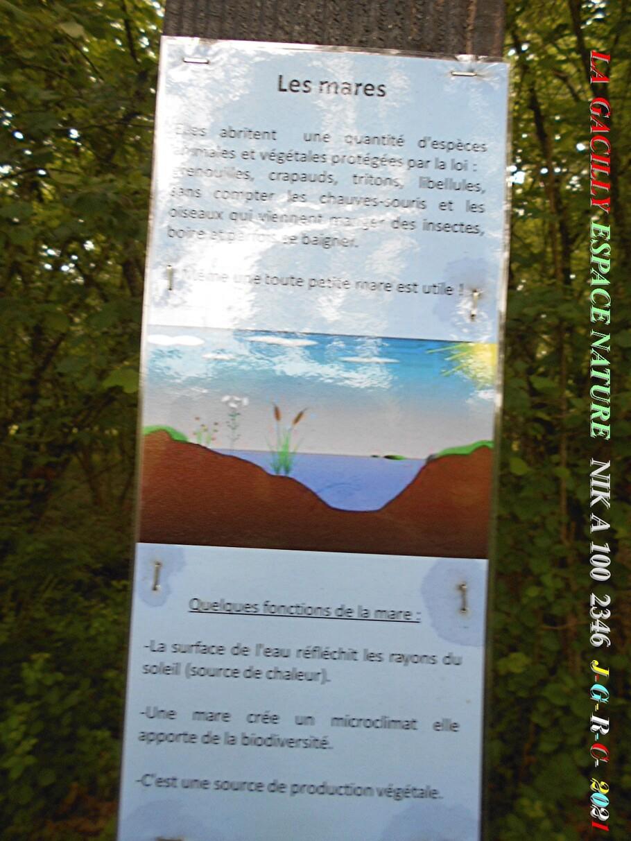 ESPACE NATURE:  D  24-06-2021    2/6  chemin du ru des Brelles LA GACILLY