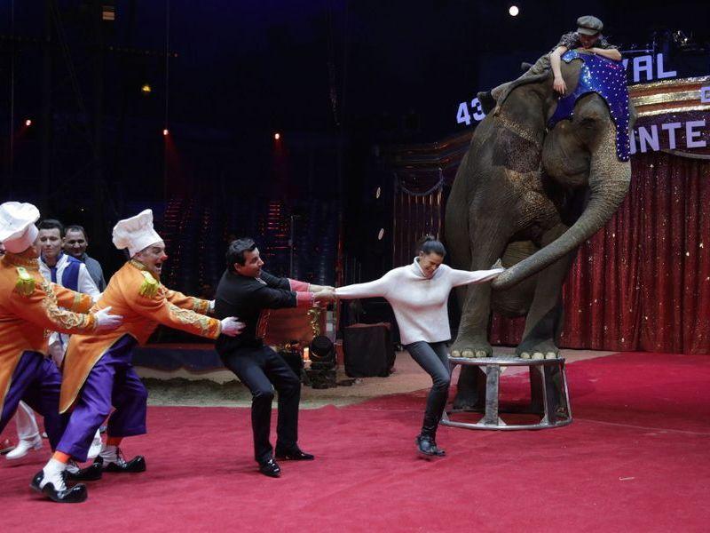 Festival international du cirque de Monte-Carlo.