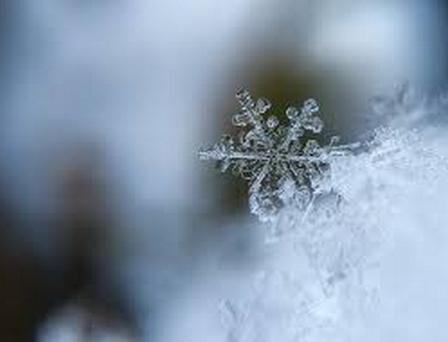 Finalement, la neige remonte toujours vers le ciel