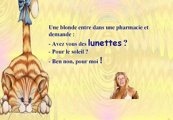 blague-blonde-2.jpg