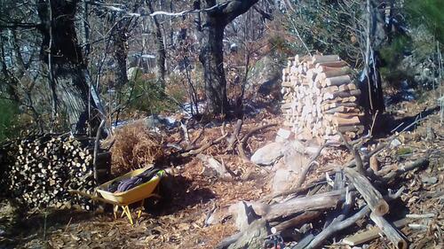 coupe de bois et De Ferme en Ferme