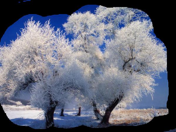 Paysage hivernal/ 17