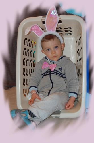 Bonne fête petit lapin !! (et joyeux 21mois)