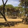 Mali Sur la piste de Taboye