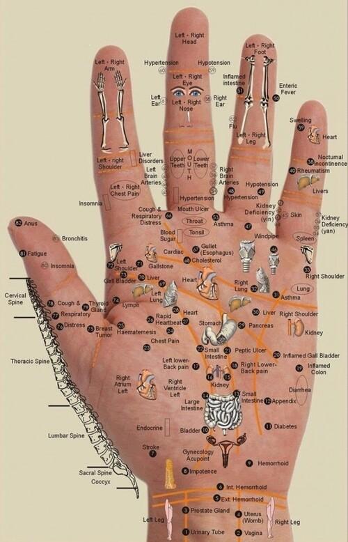 Tout est dans la paume de votre main !
