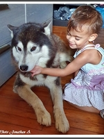 Leeroy (4 ans)