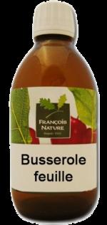 Vertus médicinales des plantes sauvages : Busserolle