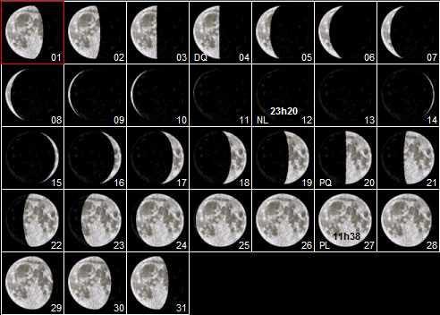 Longueur et volume cheveux crepus avec la lune for Jardin lune juillet 2015