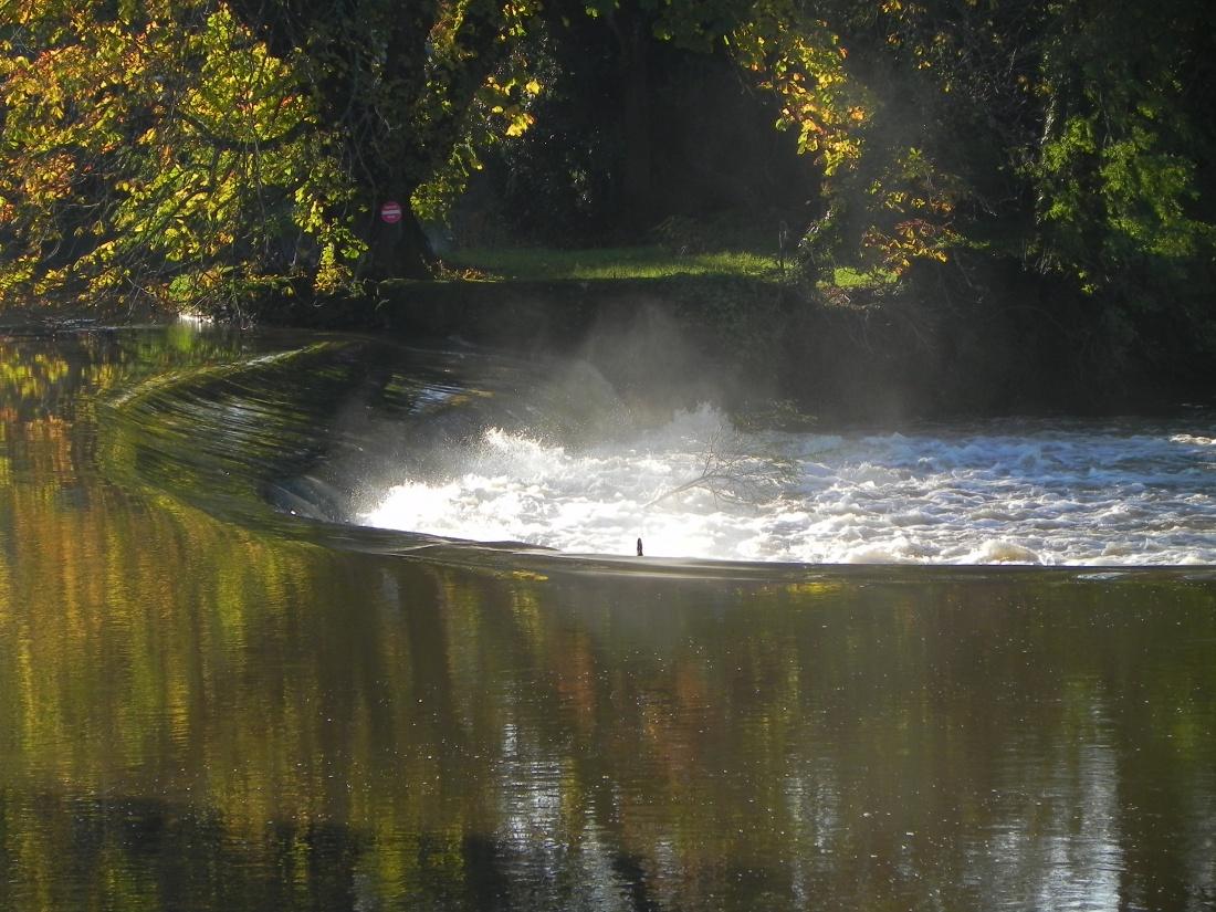 Mareuil sur Lay en Vendée