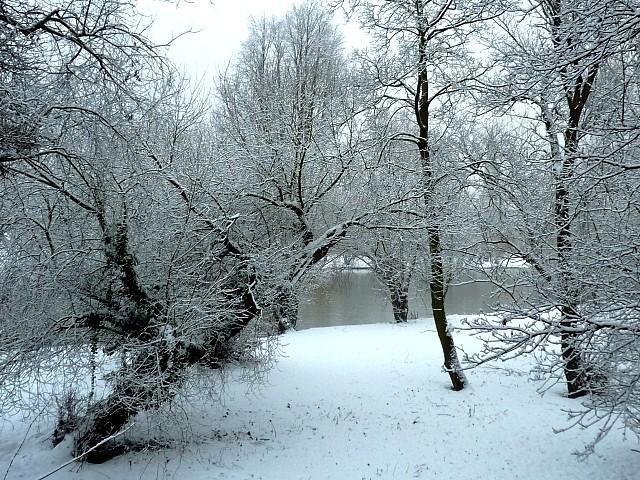 Metz sous la neige 17 Marc de Metz 16 02 2013