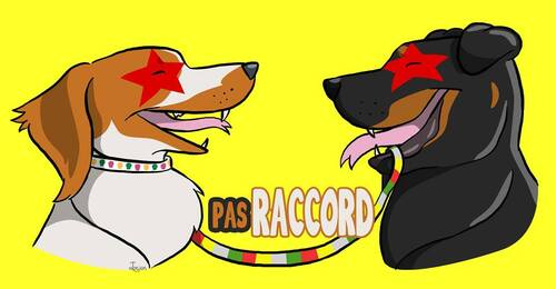 Pas Raccord - Accessoires canins