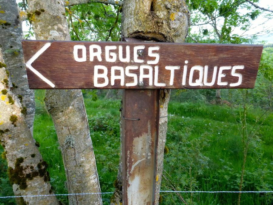 PAUSE: cause cojondtivite. Chemin de retour des orgues!