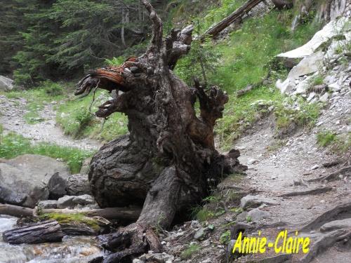 La page d'Annie Claire