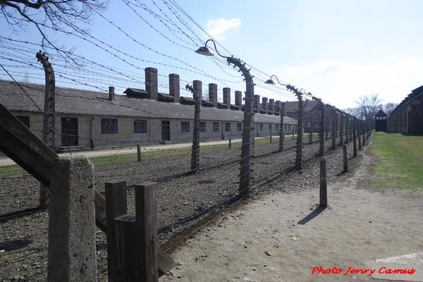 Jenry Camus s'est rendu à Auschwitz...
