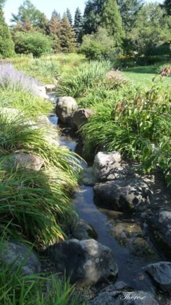Jardin botanique (85)