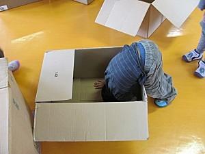 cartons 2835
