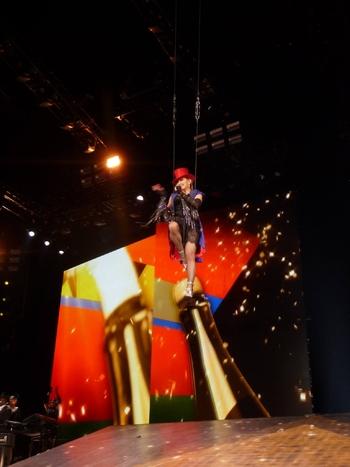 Rebel Heart Tour - 2015 12 09 Paris (25)