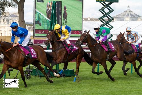 Qatar Prix du Cadran
