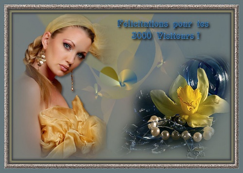 3000 Visiteurs