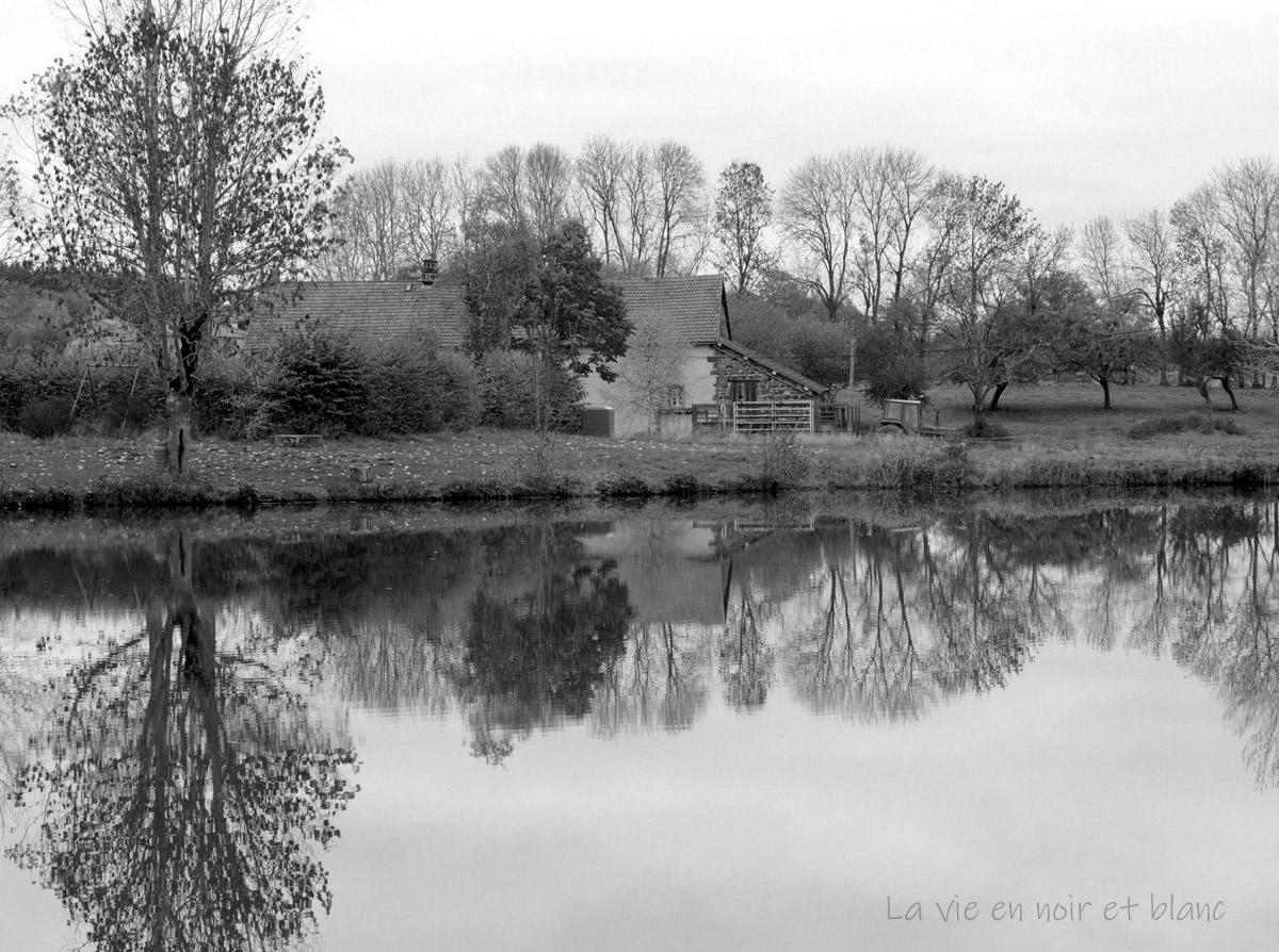 Reflets dans l'étang de Bromont - Lamotte