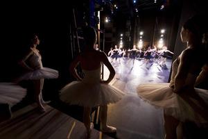 dance ballet theatre ballet dancers representation
