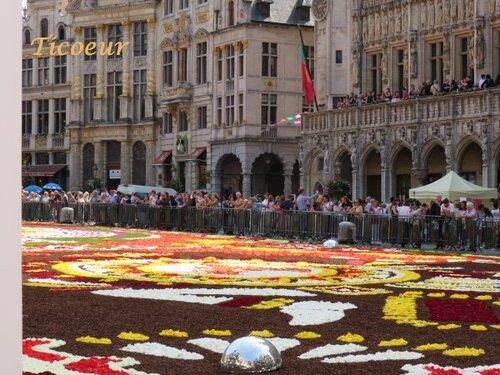 Le tapis de fleurs grand place de Bruxelles