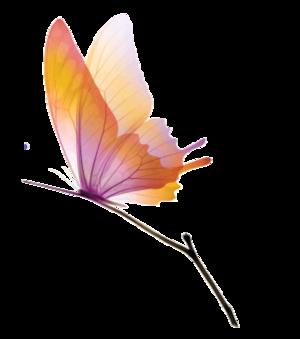 """""""Le Papillon et les Tourterelles""""  poème de Jean-Baptiste Willart de GRECOURT"""